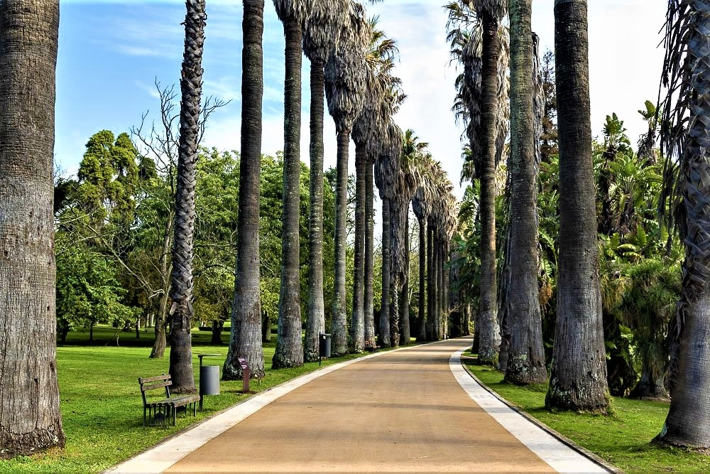 jardim botânico belém
