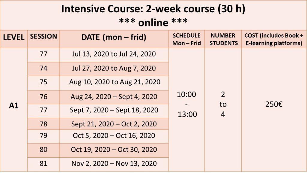 online 2-week intensive course